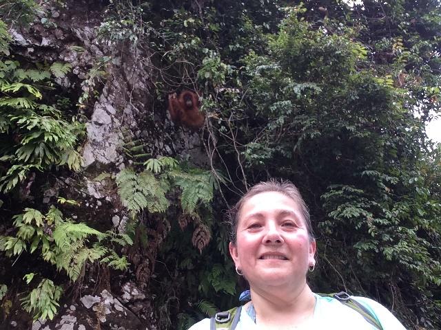 Viaje a Indonesia - Ayana Viajes