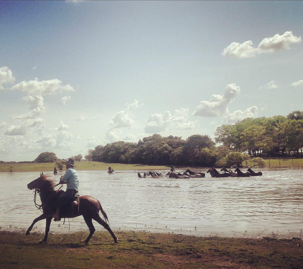 Llaneros, Casanare