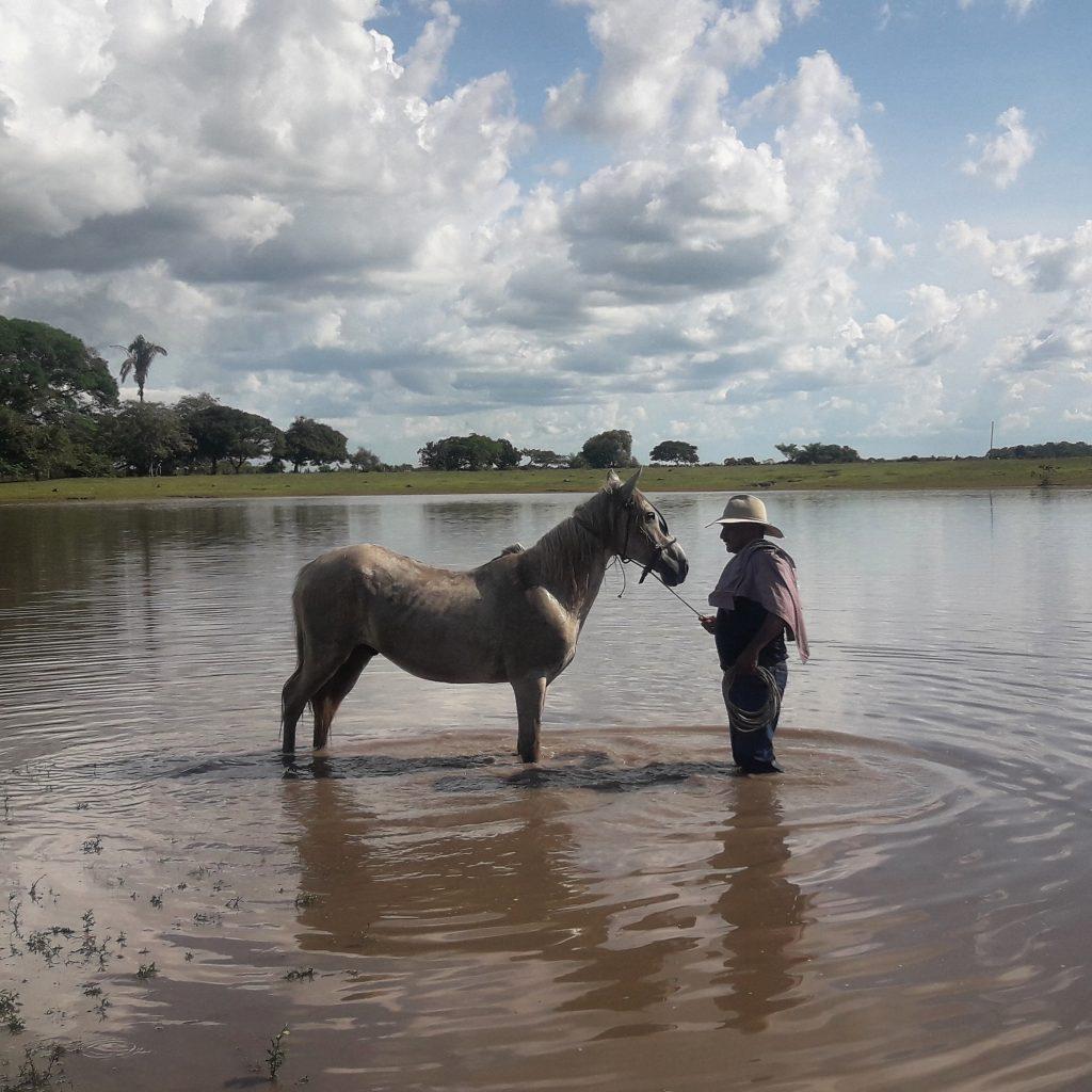 Los Llanos, Casanare