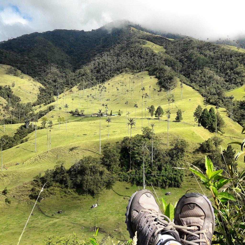 Valle del Cocora, Quindío (2)